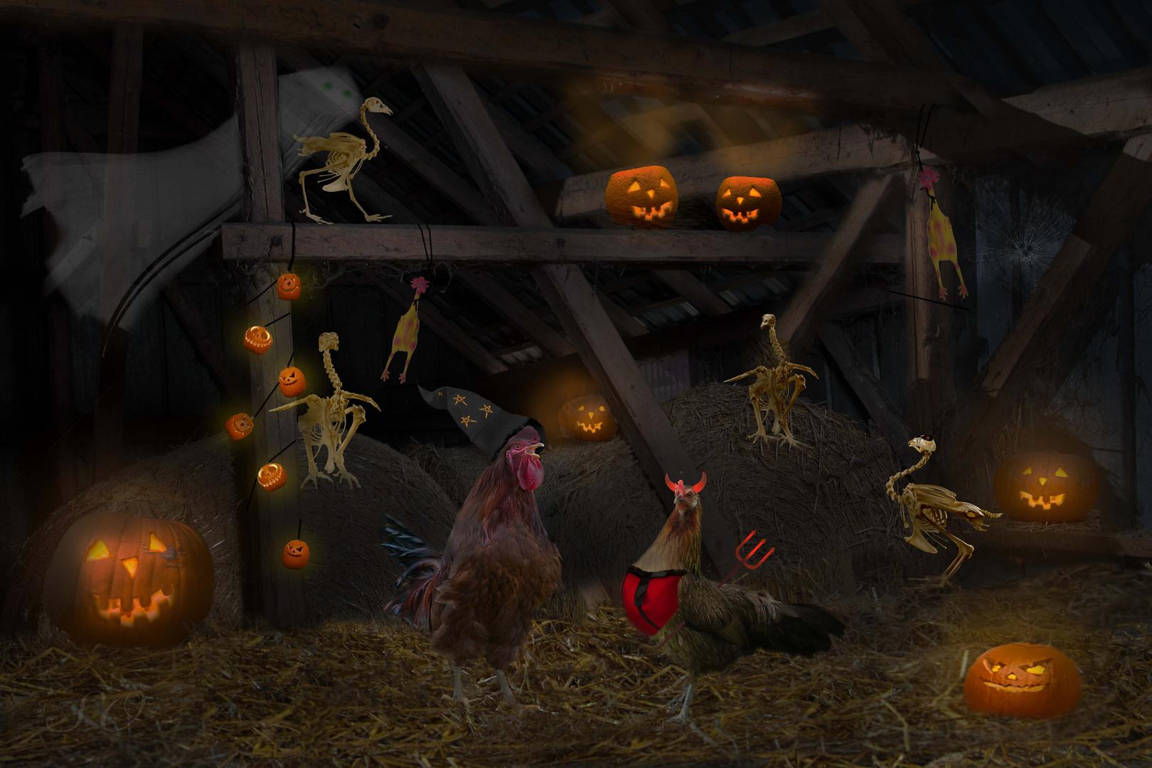 Halloween im Hühnerstall