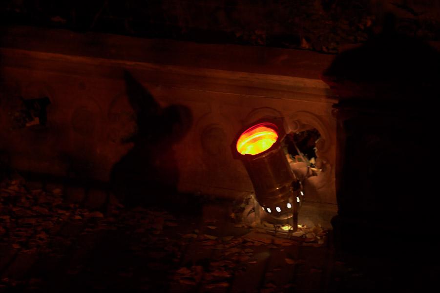 Halloween im Zoo Köln - Schatten einer Hexe