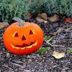 Halloween kann kommen!