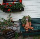 Hallstadt; Austrian landlady