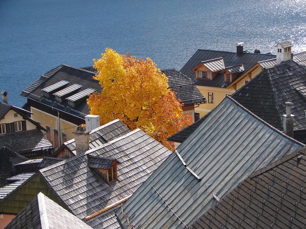 Hallstatts Dachlandschaft