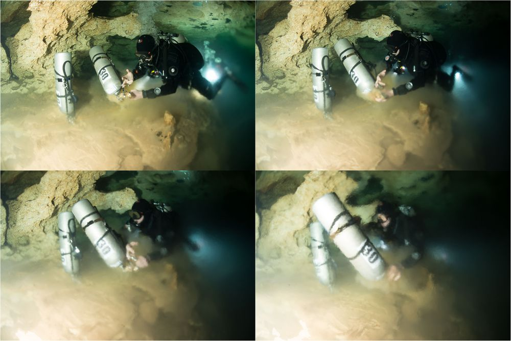 "Halocloine 3 (Höhle ""Escondido"")"
