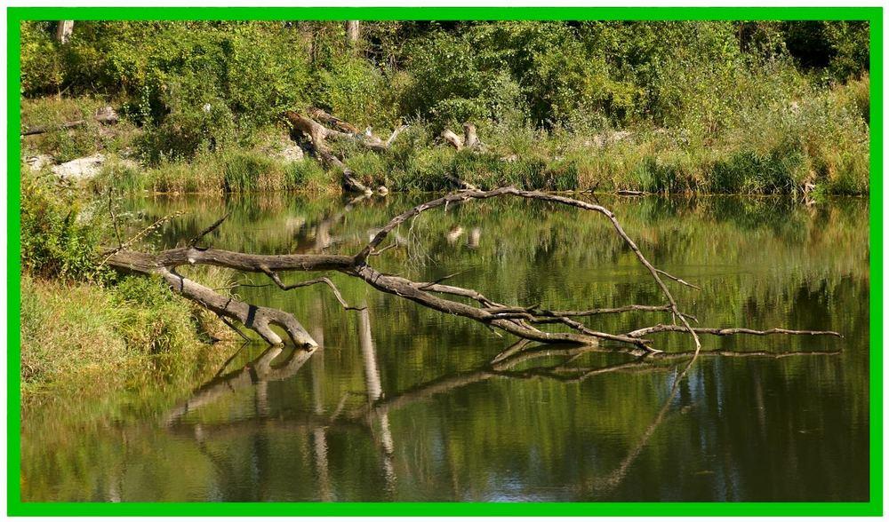 Hambergeraltarm - Natur aus zweiter Hand - Reload