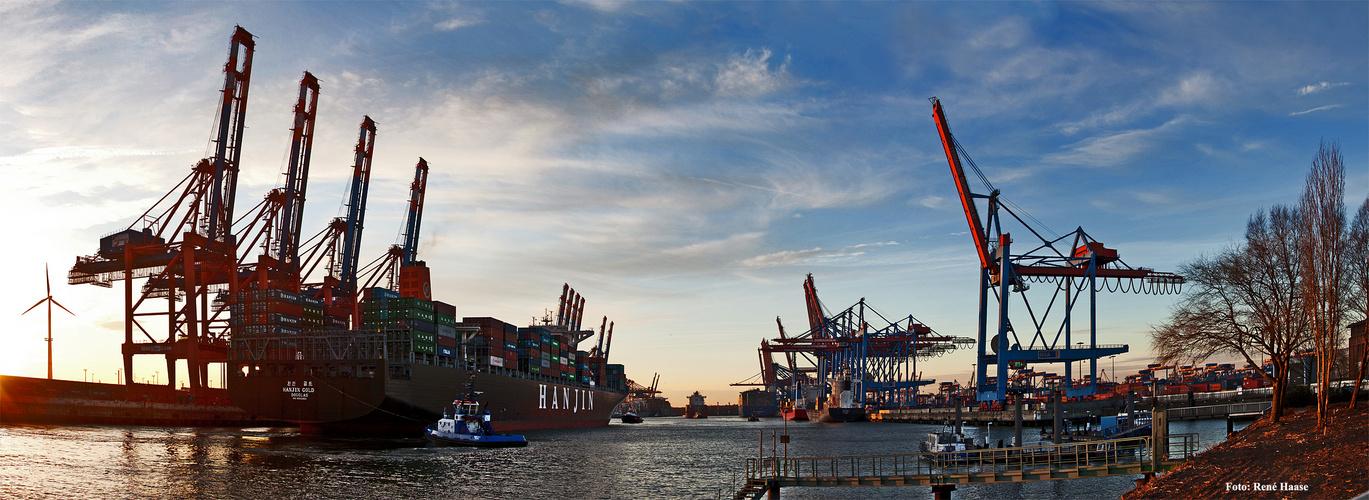Hamburg EuroGat und Buchardkai