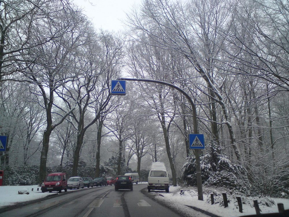 Hamburg-Stadtpark