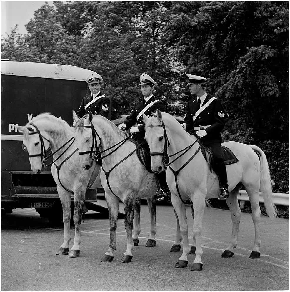 Hamburger Polizeireiterstaffel...