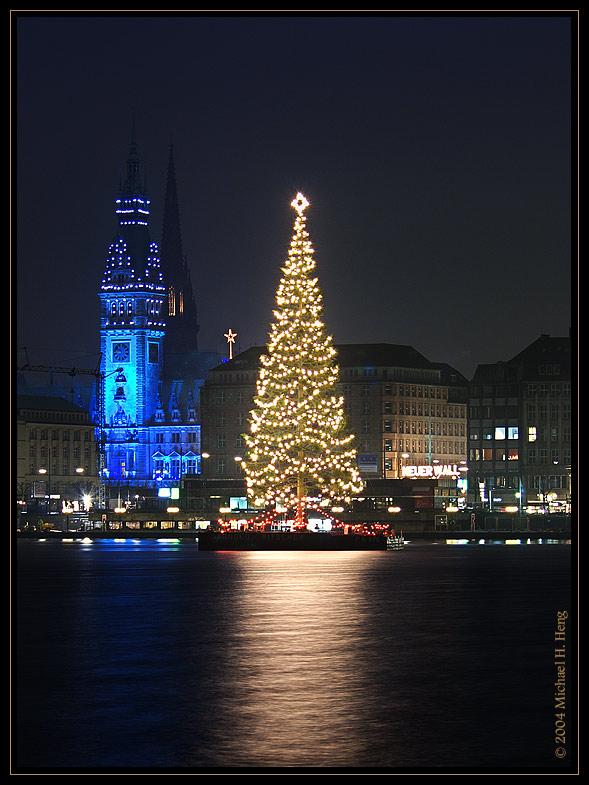 hamburger rathaus mit weihnachtsbaum foto bild