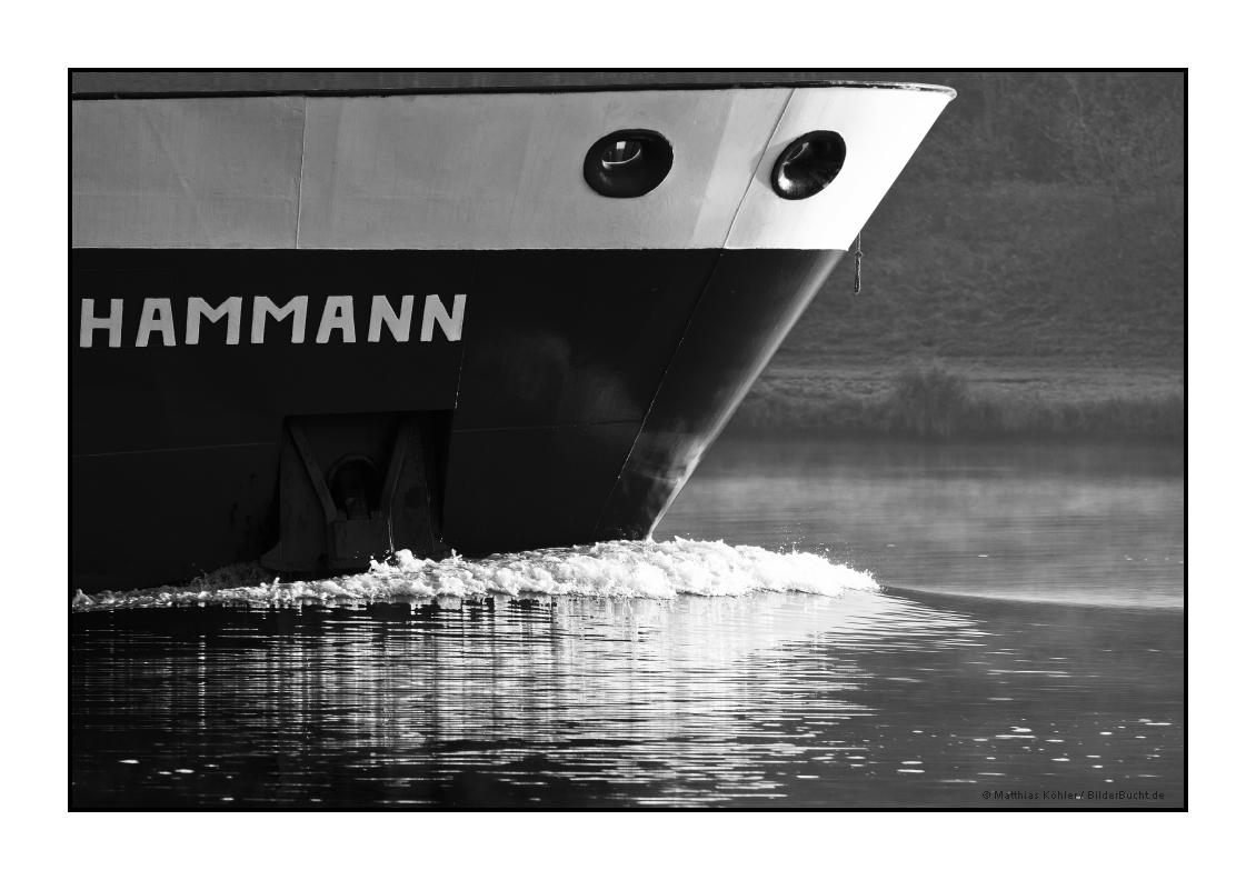 """HAMMANN"""