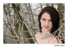 Hanny im Schnee