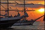 Hanse Sail 2009 - Sailing