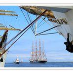 Hanse Sail 2011