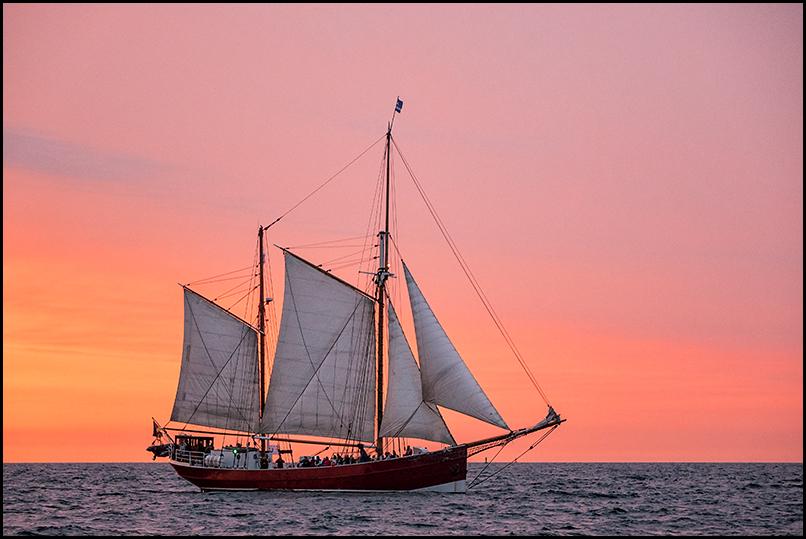 Hanse Sail 2015 (3)