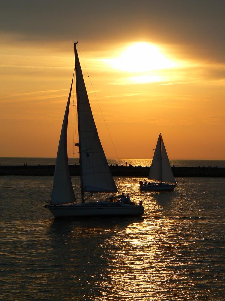 Hanse-Sail / Segler bei Sonnenuntergang