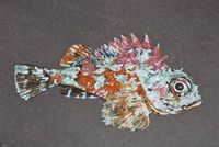 Hanspeter Fisch