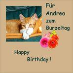 Happy Birthday, Andrea