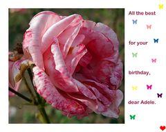 Happy Birthday, dear Adele