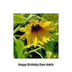 Happy birthday dear Adele