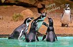 Happy Birthday, Ingo und Kerstin