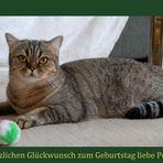 Happy Birthday, liebe Petra