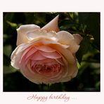 Happy birthday - rose....