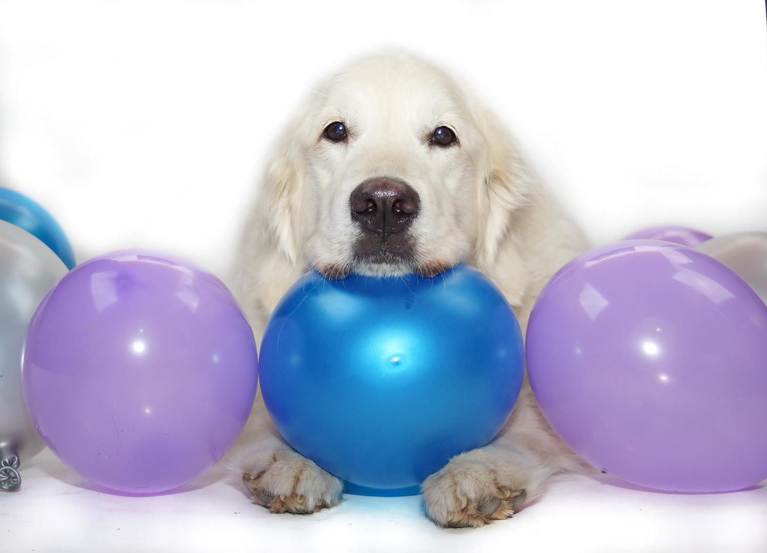Happy Birthday , Shawnee