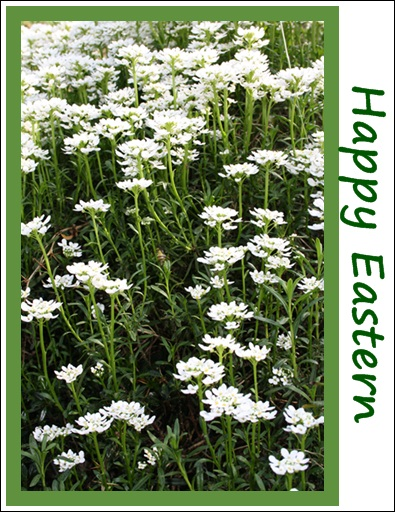 Happy Eastern....für alle FC´ler