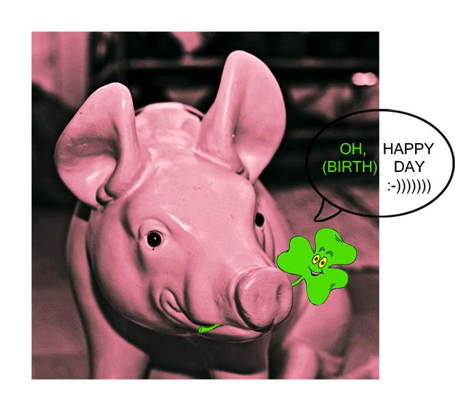 HAPPY HAPPY ....