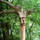 - happy tree -