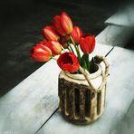 ..... happy tulipes .....
