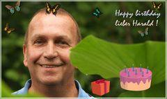 Harald hat Geburtstag