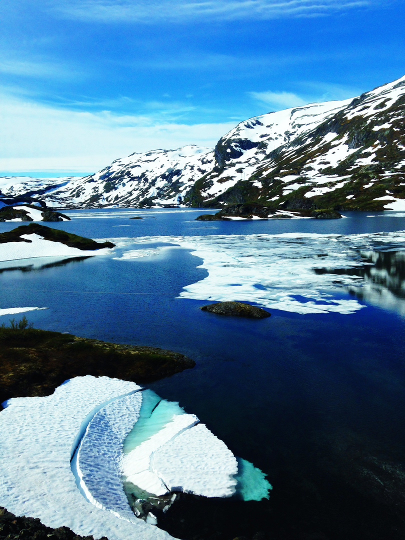 Hardangervidda (Bergensbane)