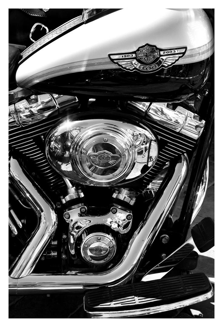 Harley centenario