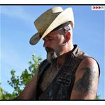Harley - Cowboy