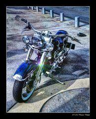 - Harley Davidson -