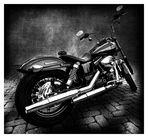 Harley Davidson SW