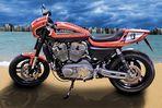 Harley Davidson XR1200 (Custom)
