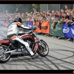 Harley Days 2009 at Hamburg Volkspark