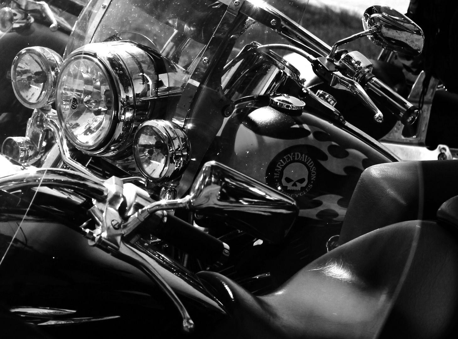 """""""Harleyville"""""""