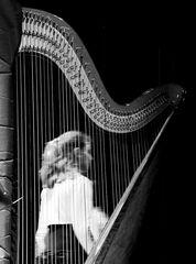 ...harp...