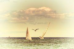 - Hart am Wind -