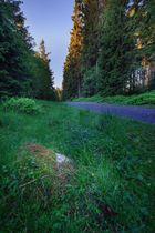 Harz 10