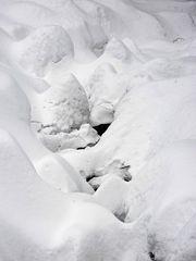 Harz im Winter 2010 - Der Weg vom Brocken nach Schierken - Bild14