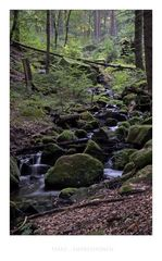 """Harz- Impressionen """" Bleichetal """""""