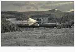 """Harz- Impressionen """" Blick auf die Eckertalsperre """""""
