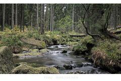 """Harz- Impressionen """" die Bode """""""