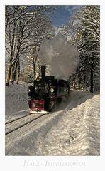 """Harz- Impressionen """" die Harzer Schmalspurbahn......"""