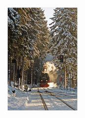 """Harz- Impressionen """" die Harzerschmalspurbahn unter Dampf...."""""""