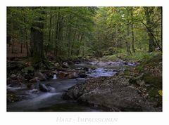 """Harz - Impressionen """" Elend - entlang der Kalten-Bode...."""""""