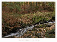 """Harz - Impressionen """" entlang der Ecker...."""""""