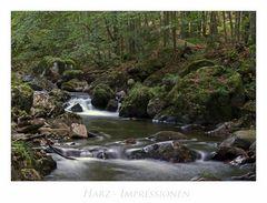 """Harz - Impressionen """" entlang der Kalten-Bode...."""""""